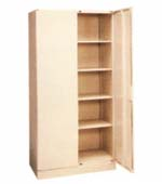 Double Hinged Door Cabinet